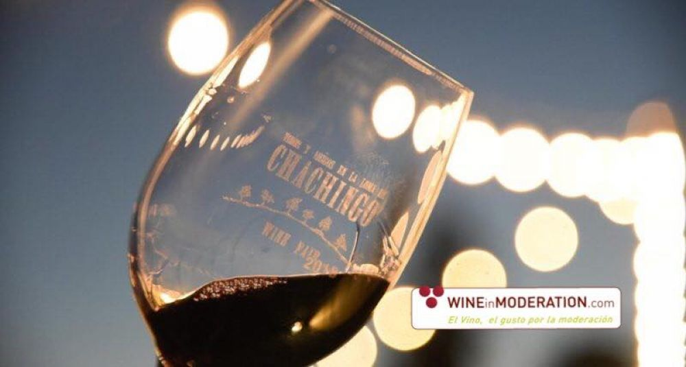 Wine Fairs in Argentina: Wine in Moderation a key partner